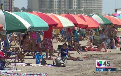 Reportan bacteria carnívora en las playas de Galveston