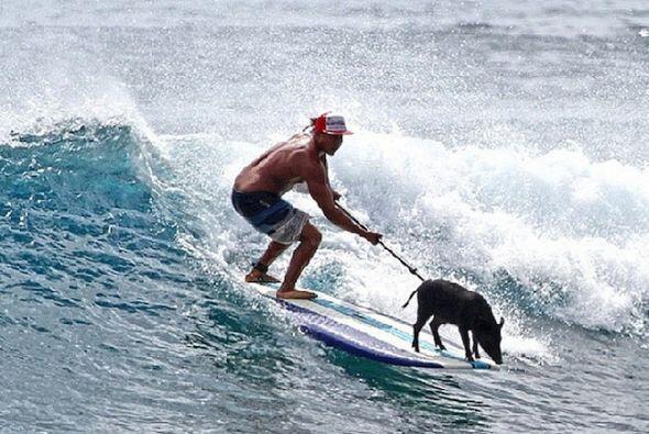Costco le regala tablas de surfear y su dueño Kai Holt ha prometido jamá...