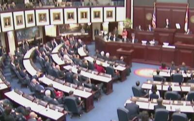 Varios políticos del sur de Florida se lanzan como candidatos para senad...
