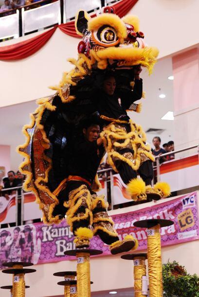 os leones están hechos con diversos materiales.
