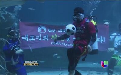 Buzo realiza jugadas con un balón en un acuario