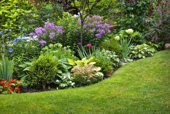 Perenne o anual. Elige una mezcla de plantas perennes y anuales. Las per...