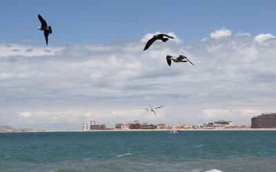 Puerto Peñasco: Destino playero cerca de Arizona