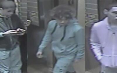 Buscan a tres adolescentes acusados de causar costosos daños en Nueva York