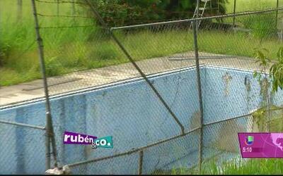 En completa dejadez la piscina de la Universidad de Puerto Rico, Recinto...