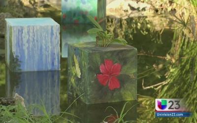 Aprenden a cuidar el medioambiente a través del arte