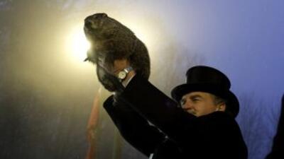 La marmota Phil salió de su guarida en Punxsutawney y pronosticó seis se...