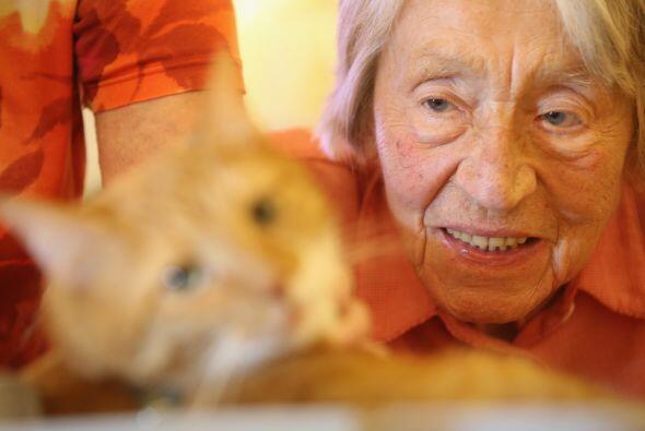 La interacción entre los animales y los seres humanos podr&iacute...