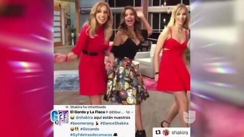 Gracias al retuit y post que nos dio Shakira, nuestro 'Boomerang' alcanz...