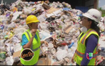 Rose Millet se fue a trabajar a una planta de reciclaje