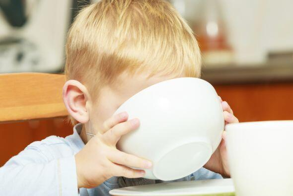 Los lácteos son un aporte básico en su nutrición, p...