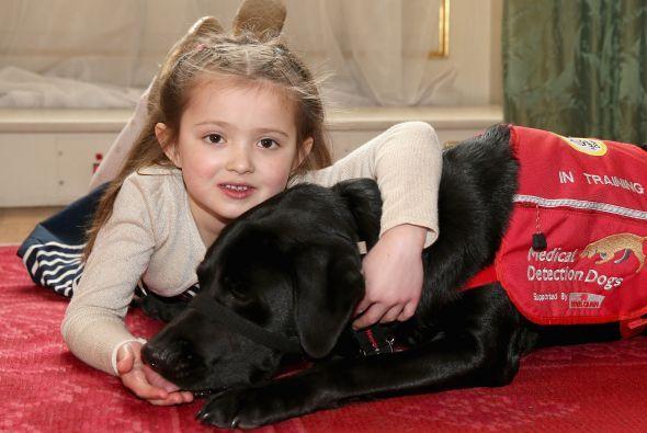 Cerys es la cliente más joven en adquirir un perro detector de enfermeda...