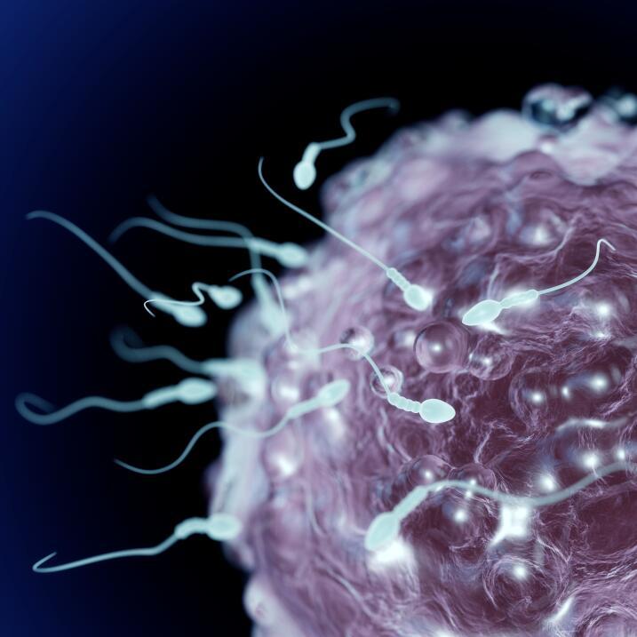 salud infertilidad