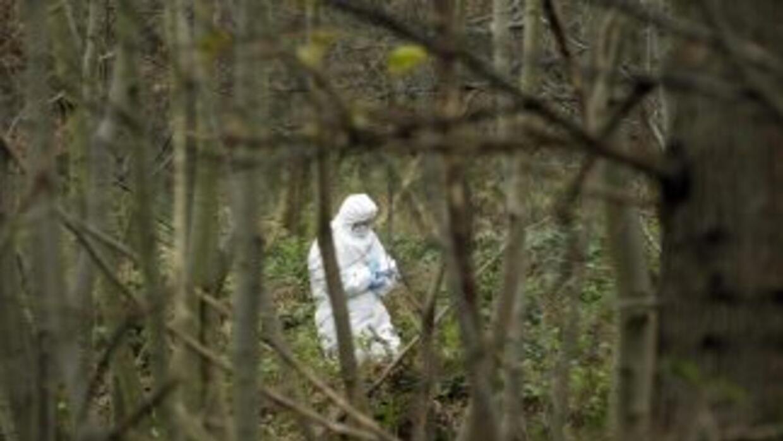 En la zona donde se produjo el asesinato se cree que para obtener buenas...