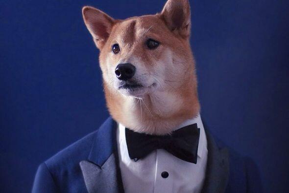 Si hablamos de estilo, Mensweardog es el indicado, basta con mirar sus f...
