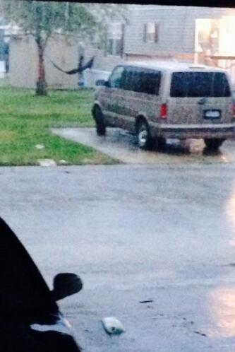 Lluvias e inundaciones en Houston