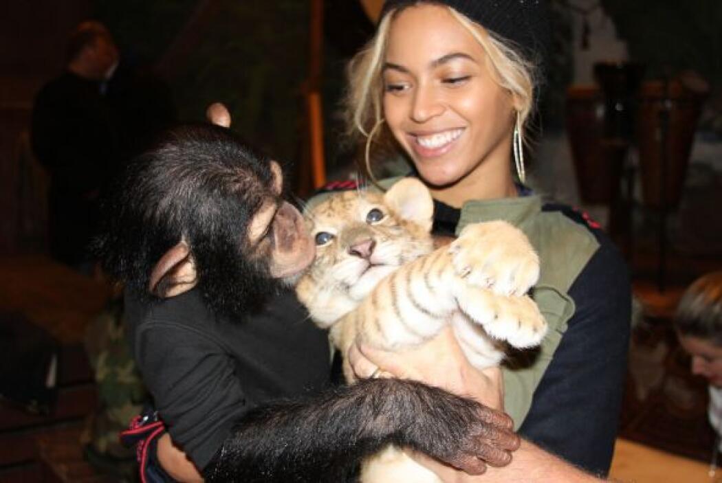 Beyoncé y Jay-Z organizaron una sensacional fiesta a su pequeña Blue Ivy...