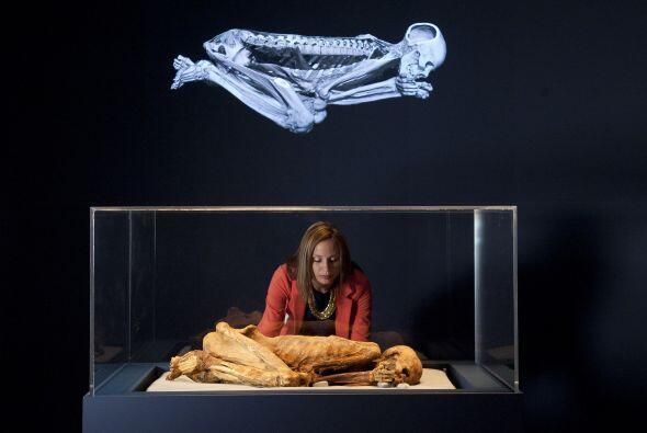 """El Museo Británico presenta la exposición """"Ocho momias, ocho historias"""",..."""