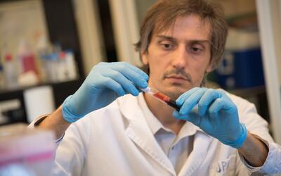 El científico argentino se especializa en virología e inmunopatología.