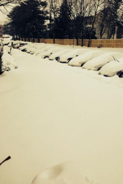 Pero si un automóvil cubierto por la nieve asombra, ¿qué tal esta fotogr...
