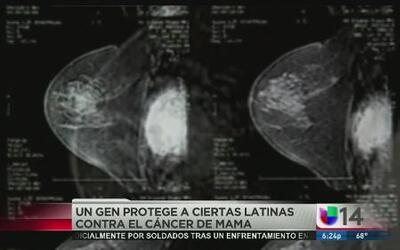 Raíces indígenas protegen a latinas contra cáncer de mama