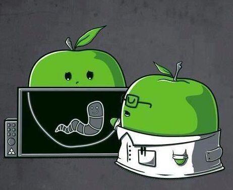 La manzana va al doctor.