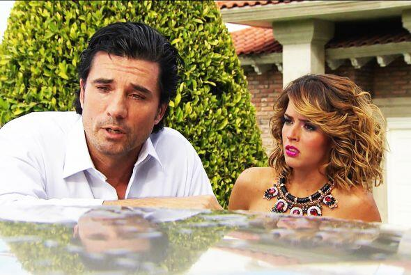 Mira nada más cómo está Armando, lo convertiste en el hombre más triste...