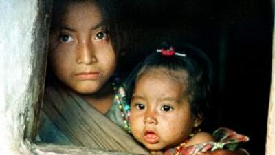 Según datos de Naciones Unidas, el 50% de los niños menores de cinco año...