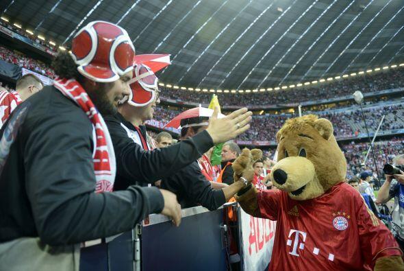 Y el Oso alemán del Bayern.