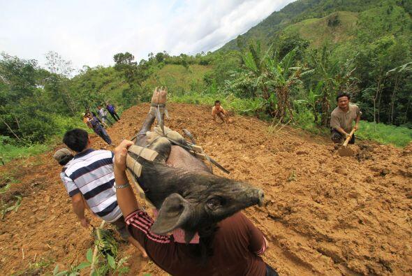Las autoridades batallaron para trasladar tractores y excavadoras a trav...