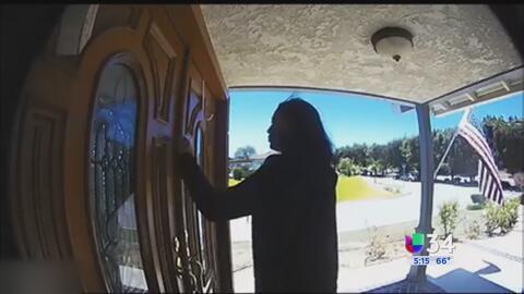 Ladrona de Palos Verdes en la mira