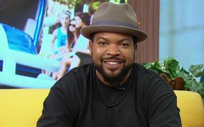 DAM Ice Cube - '22 Jump Street'