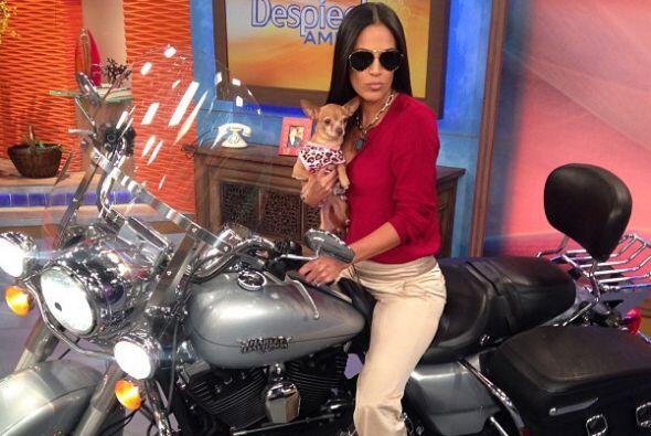 """""""Súbete a mi moto... ¡¡¡Y vámonos a..."""