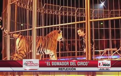 Reflexión: El domador de circo