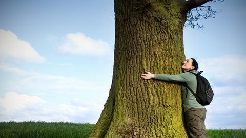 Tips para recargar nuestras energías en la naturaleza
