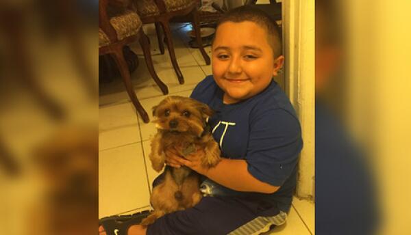 Juanito y su perrito Buddy volvieron a estar juntos después de cinco días.