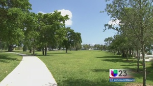 Proponen pasar a manos privadas el Museum Park