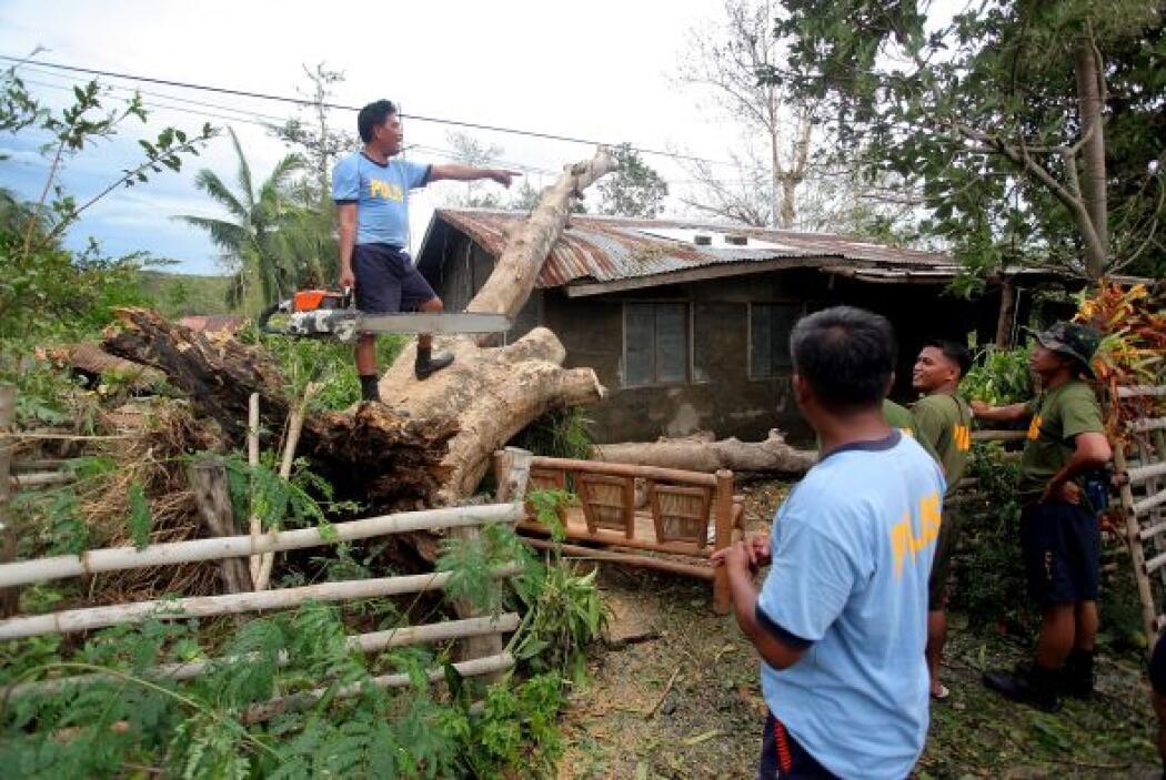 Unas 100 mil hectáreas se vieron afectadas únicamente en Isabela, una de...