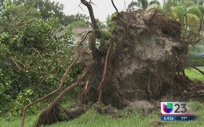 Pequeño tornado deja destrozos en Broward