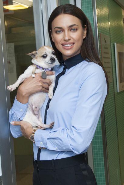 ASPCA es una organización sin fines de lucro que tiene como objet...