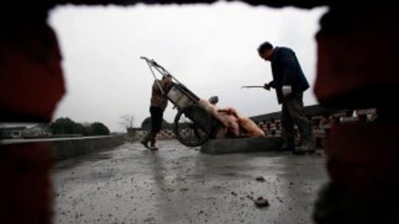 El origen de una parte los miles de cadáveres de cerdo que han sido reti...