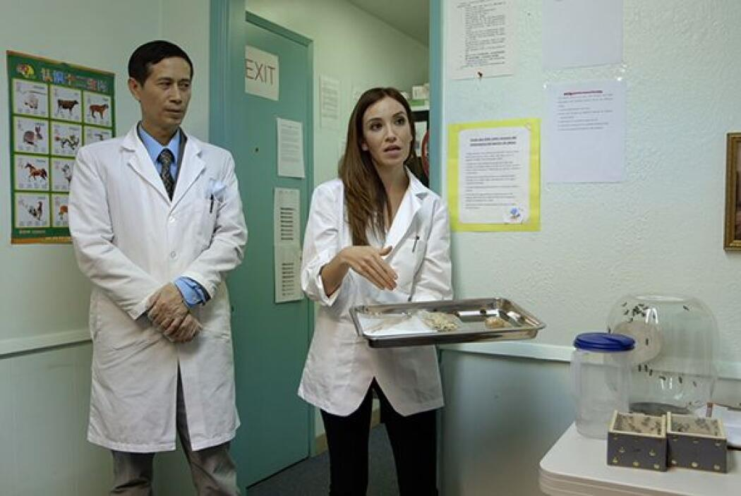 Entre otros métodos, el doctor Tom usa un pre-tratamiento con los pacien...