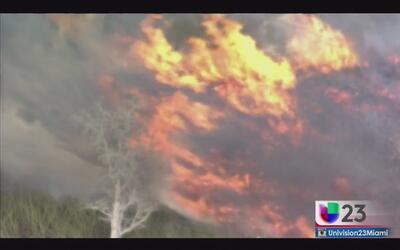 Fuegos de maleza aún no amenazan residencias