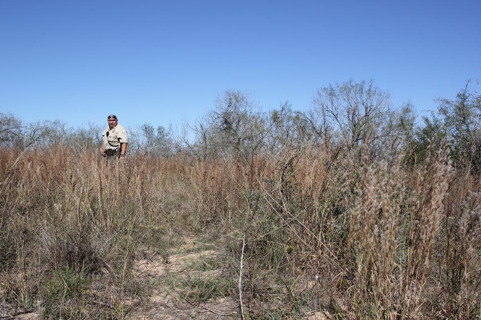 El vicesheriff del condado, Ben Gómez, recorre un terreno donde los migr...