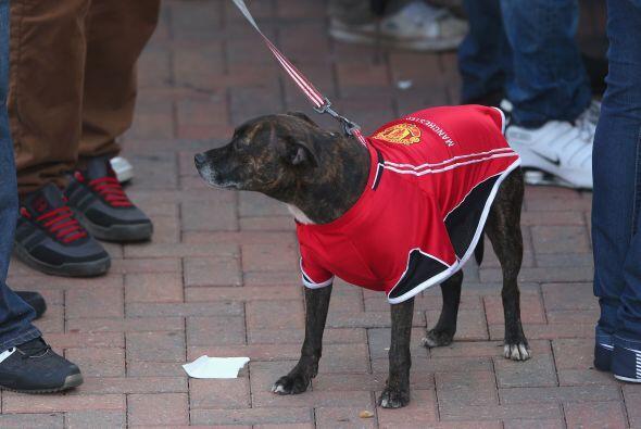 No faltó nadie al desfile del club, ni las mascotas que vestían los colo...