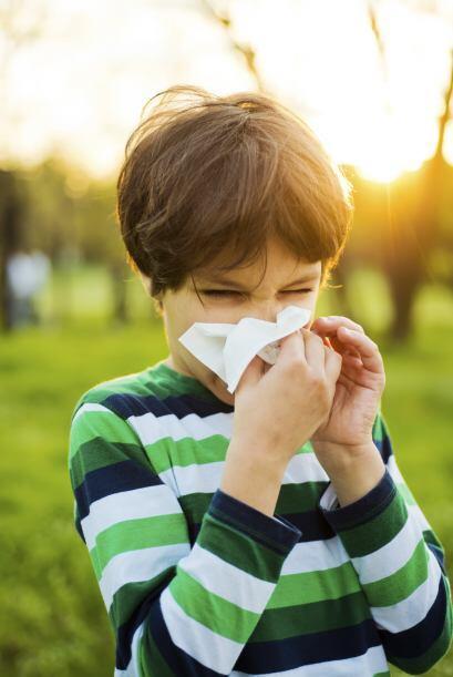 Alergias.Vigila la reacción de tus niños frente a estos al...