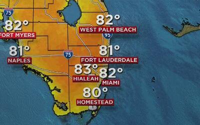 Tiempo cálido y sin lluvias en Miami, el pronóstico para este miércoles...
