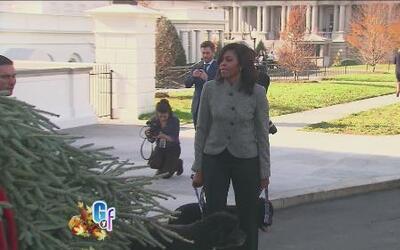 Michelle Obama recibió el arbolito que adornará la Casa Blanca