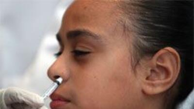 Hospital Children´s de Dallas define criterios sobre pacientes con gripe...