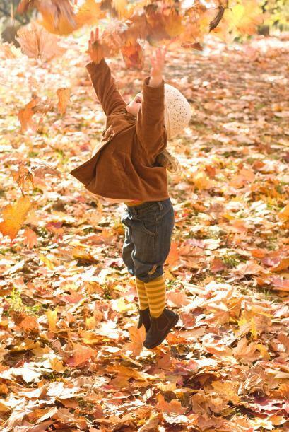 ¡Atrapen las hojas! Si quieres pasar una tarde divertida con tu hi...